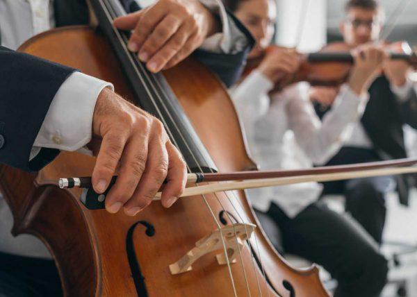 Fotografia skrzypiec