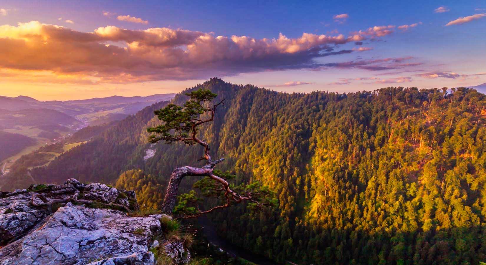 Fotografia ze szczytu góry